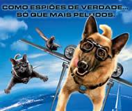 caes_e_gatos_2-promo